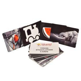 Thasvi Visual Stimulation Cards - Set 1