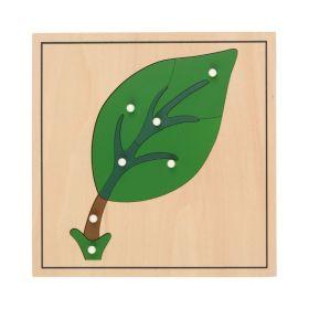 HABA Botany Puzzle ?Leaf?
